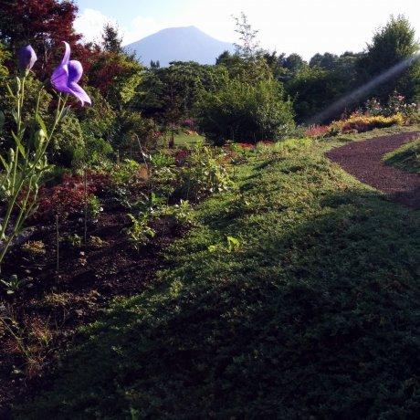 Hachimantai Flowerland