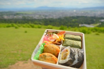 Picnic at Mount Wakakusa