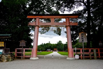 Kamigamo Shrine: A Place of Healing