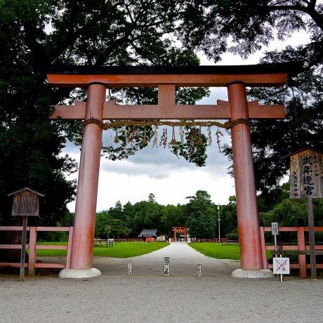 Kamigamo Shrine: A Place of Healing
