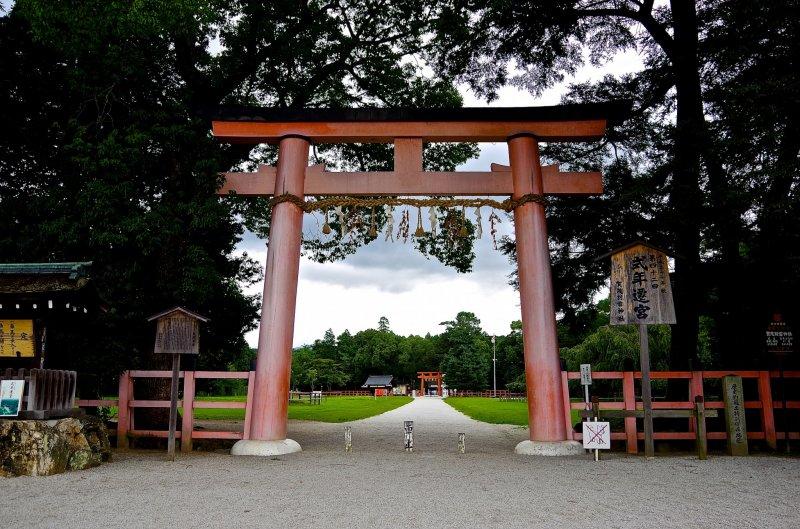 <p>A long approach cuts through a wide open field between these two&nbsp;torii gates</p>
