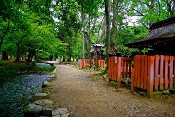 <p>Several inner shrines face the&nbsp;Nara-no-ogawa stream</p>