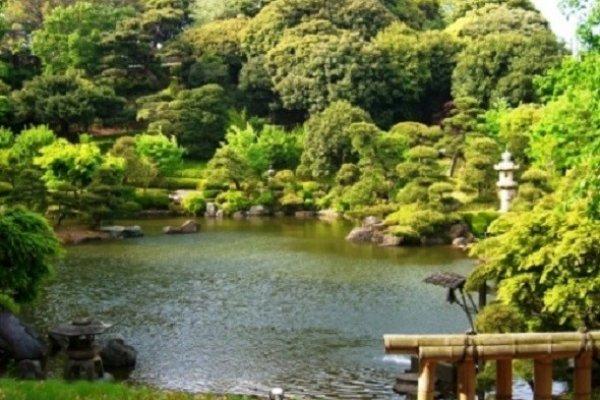 こちらは朗峰会館建物内から写した松濤園ですが、距離がありすぎました。公開日が楽しみです。