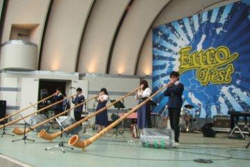 <p>Alphorn performance</p>