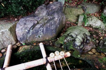 <p>This is &#39;Choumei-sui&#39;, the &#39;Power Water for Longevity&#39;!</p>