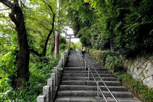 Go up the long stone stairs to the shrine