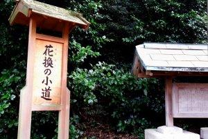 金ヶ崎城跡に続く道を案内する木札には「花換えの小道」と書かれている。これは同じ城跡に建つ金ヶ崎宮の有名なお祭り「花換えまつり」に因んだ名前だ