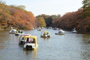 游览在湖中的船