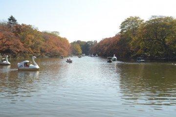 <p>湖景</p>