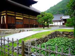 Ao nằm gần ngôi đền này