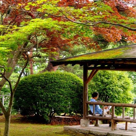 岩手公園(岩手県盛岡市)