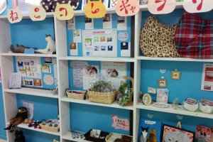 Various cat theme accessories for humans on sale at the front of the store