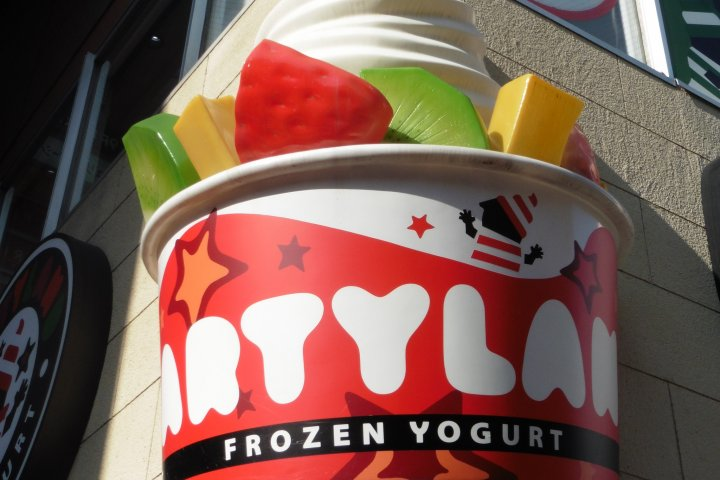 Frozen Yogurt at PartyLand
