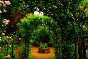 Rose Garden di luar Music Forest Museum.
