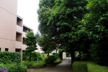 <p>Outside Higako Sports, my residence in Higashi-Koganei</p>
