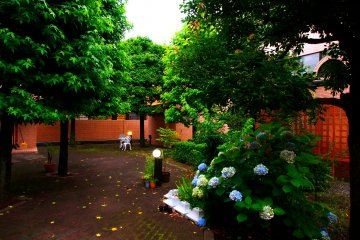 <p>The calm courtyard of Higako Sports in Higashi-Koganei</p>