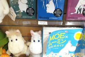 "Here you can buy ""The Delightful Moomin Family"" DVDs, stuffed animals and magazines"