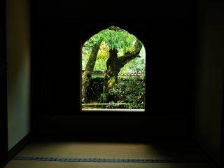 受付から客殿までの小部屋。ここに配置された飾り窓にも知らずに眼が惹かれる
