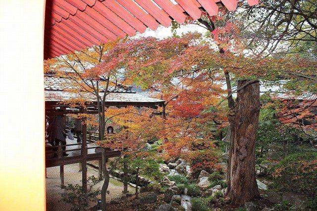 Taman di dalam Daikakuji