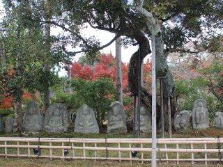 Beberapa patung Budha yang bersedekap di bawah pohon