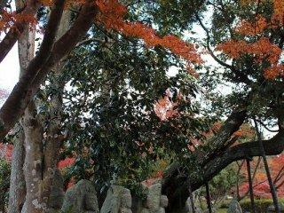 Daun musim gugur di sekitar patung seakan membungkus mereka dan membentuk bayangan tebal