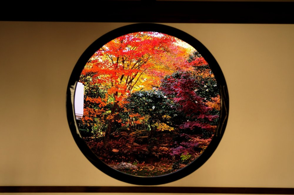 Apa yang saya lihat dari 'Window of Satori (Kebangkitan Spiritual)' sangat cemerlang