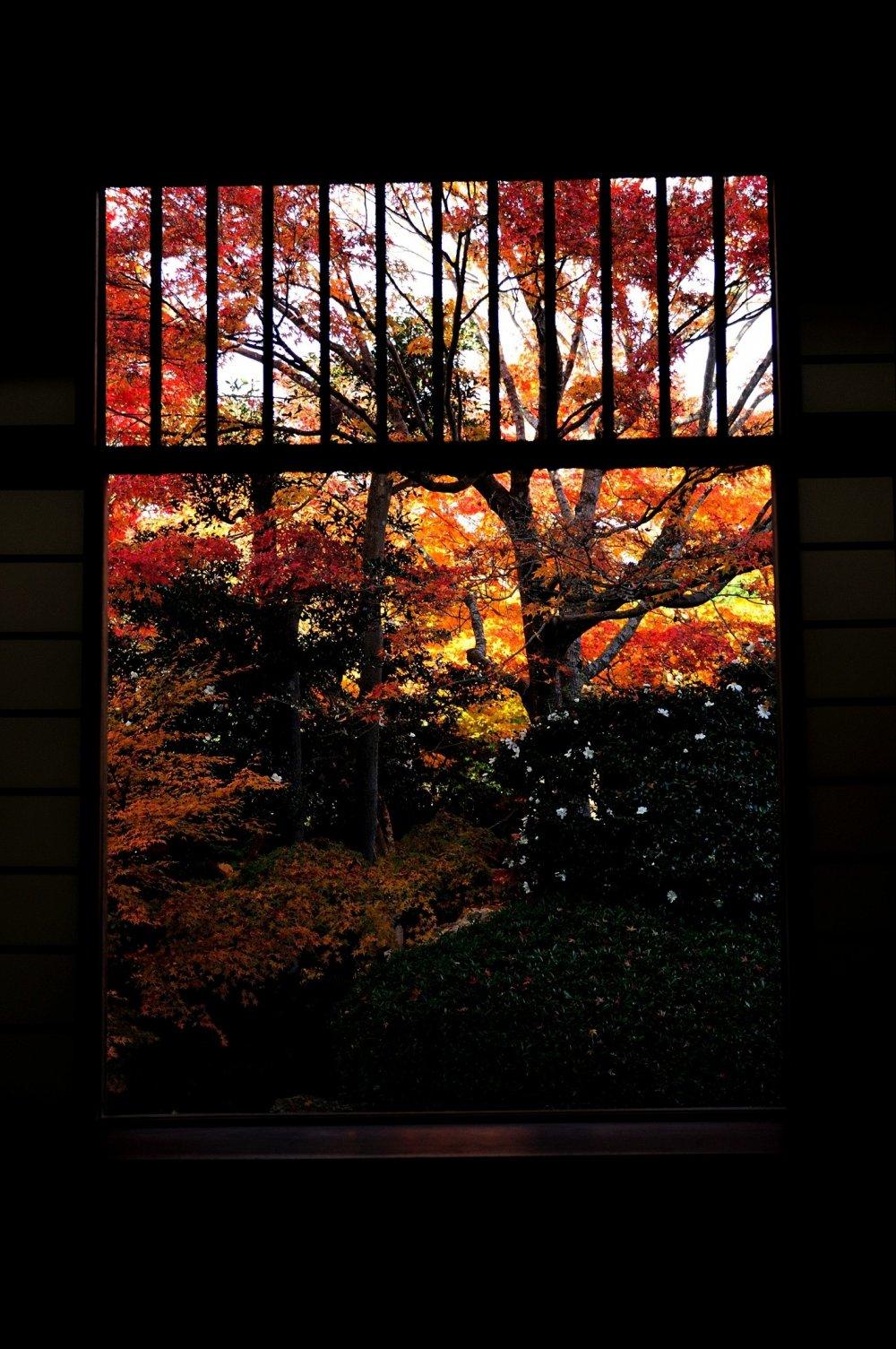 迷いの窓も今日ばかりは唯無心に眺めただけ