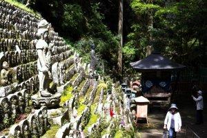 Buddhas lining the path
