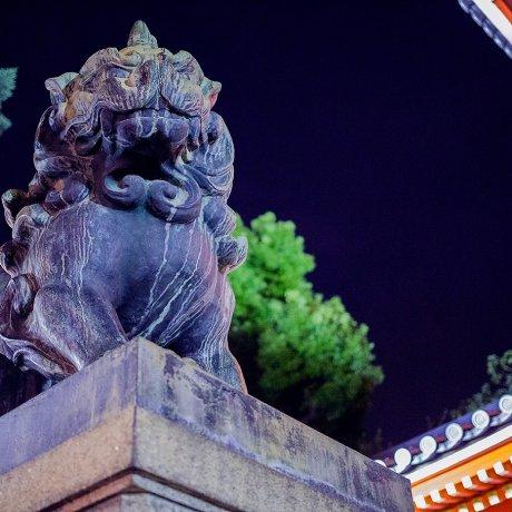 Yasaka Shrine in Twilight Hours