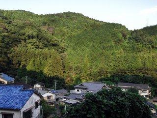 Beautiful views of the mountainous backdrop.