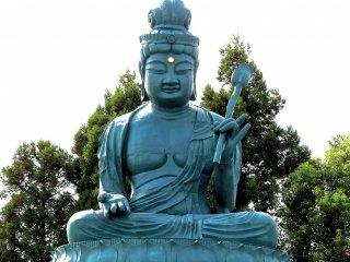 Fukui Daibutsu xanh dương ngồi lặng lẽ trên sân chùa Koshoji