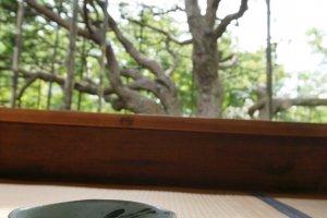 ค่าเข้าวัด Hosenin จะรวมค่าชาเขียวและขนม
