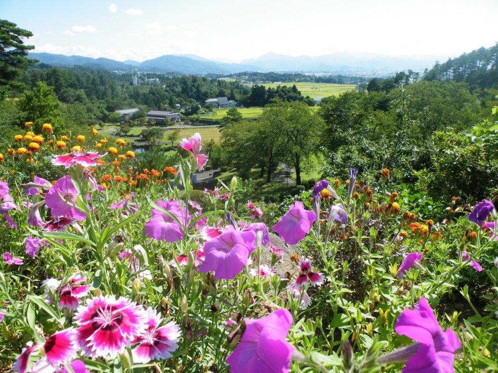 Kannon se trouve au sommet d'une colline et voici la vue alentour