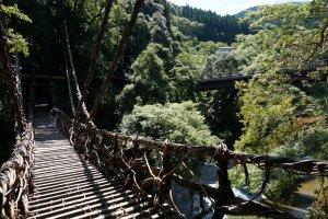 สะพานเถาวัลย์ทีแรกก็ดูชิลล์ๆ