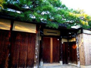 Des branches de pins sur une porte en bois