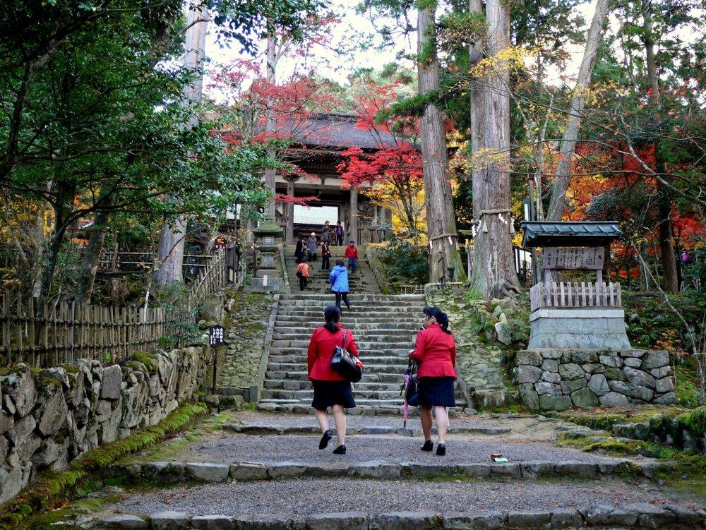 정문을 향해 계단을 올라가는 두 여행 가이드들