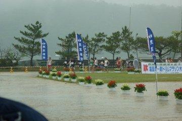 Start of the 9.5k race