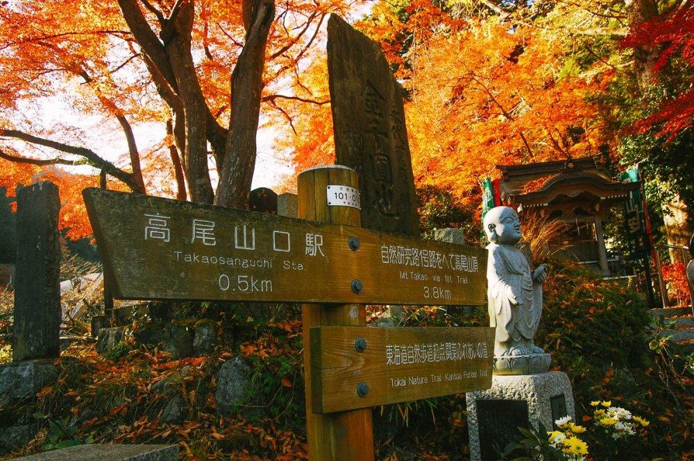 Petunjuk jalan yang senantiasa membantu Anda menuju puncak Takaosan. Petunjuk ini dapat dijumpai di banyak lokasi.