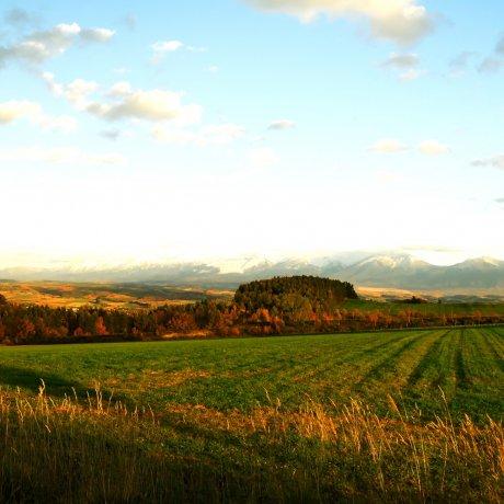 Trans-Hokkaido Autumn Foliage Chase