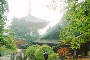 Terlihat seberapa megahnya Pagoda Konpon Daito dari kejauhan