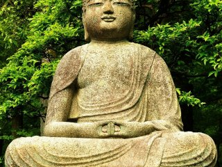 When you pass the main gate and Kyoyochi Pond, and walk along the pathway leading to the administration office (theKuri building), you'll find this stone statue of Buddha on your left