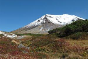 ใบไม้แดงที่พื้นคู่กับภูเขาไฟ