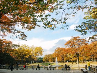 Terdapat sebuah kolam dan air mancur di tengah taman, biasanya digunakan untuk area berkumpul.