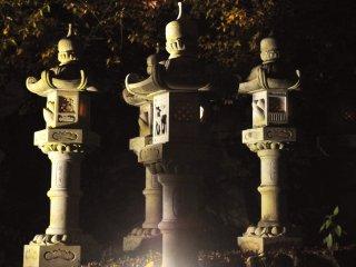 Les lanternes du soir semblent émerger de l'obscurité