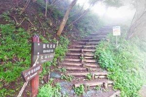 It all starts here. The misty trailhead at `Yabitsu-toge' (Yabitsu-Pass)