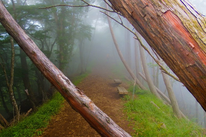 As we ascended further, the thick fog remained