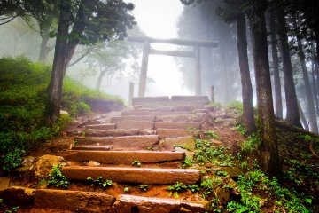 <p>A large misty covered `torii` (gate) marking the short ascent to Upper Afuri Shrine along a fog covered path</p>
