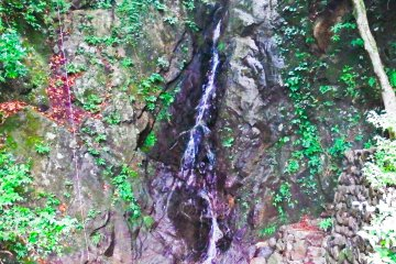 <p>&nbsp;Located close by to these dragons was this small but pleasant waterfall</p>
