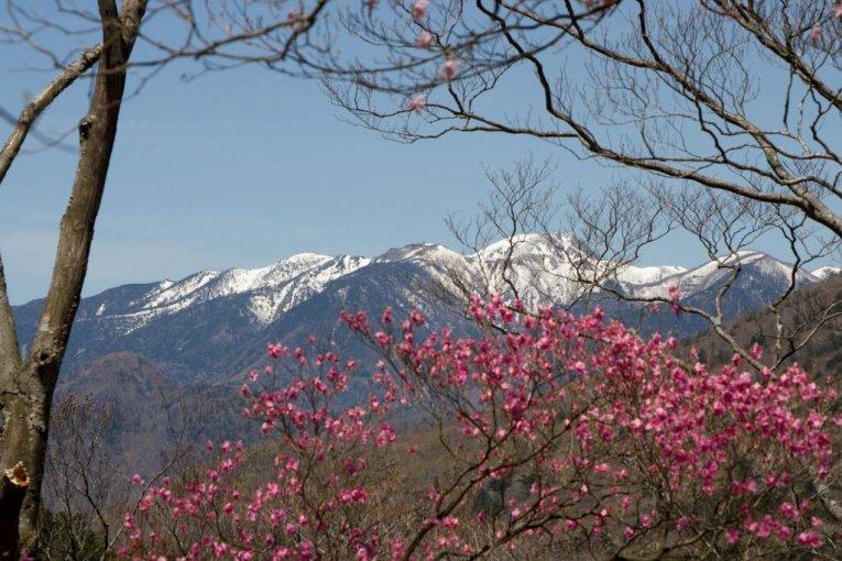 Lake Chuzenji to Akechidaira Hike