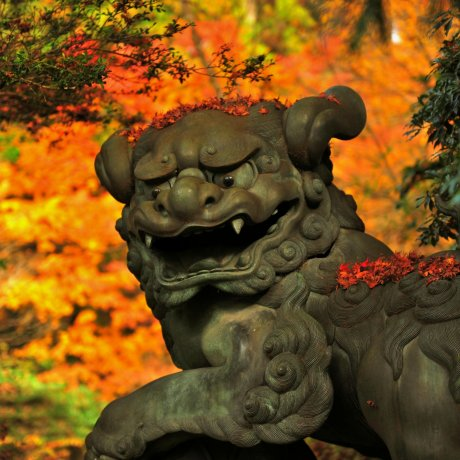 Храм Хаконе: Бог удачи